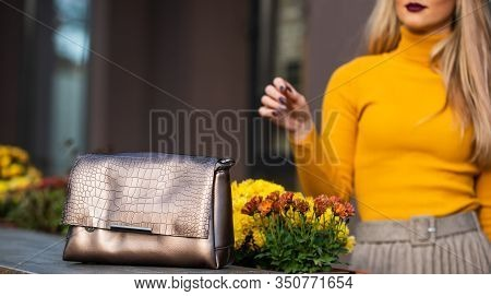Exactly What You Are Looking For. Golden Female Bag. Fashionable Female Accessory. Selective Focus.