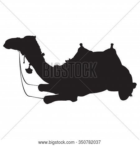 Arabian One-humped Camel Dromedary With Bridle And Saddle Silhouette, Vector Illustration.