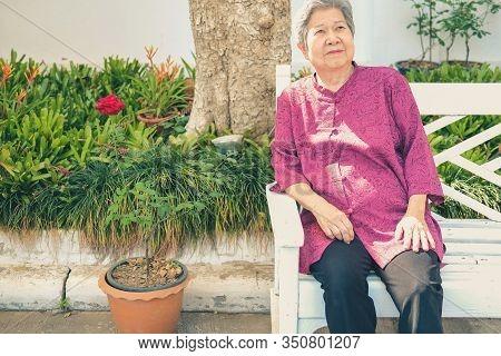Old Elder Woman Resting In Garden. Elderly Female Relaxing In Park. Senior Leisure Lifestyle
