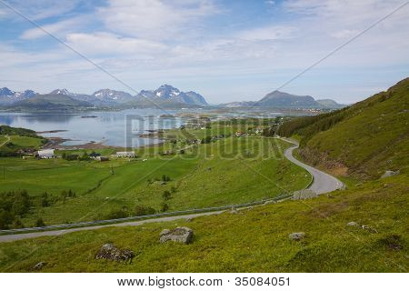 Green fields on Lofoten islands in Norway during short summer above arctic circle poster