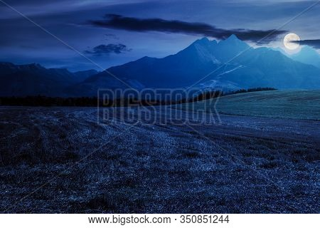 Rural Landscape Of Slovakia In Summer. Empty Wheat Field In August. High Tatras Mountain Ridge In Th