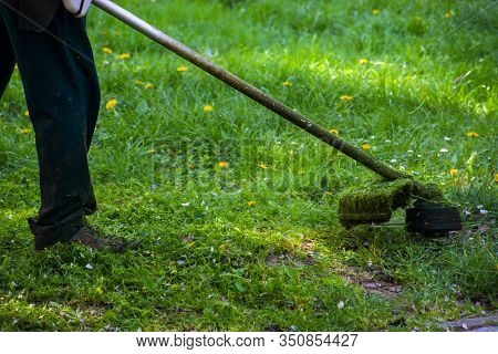 Grass Trimming Work In The Park. Professional Lawn Care Service Using Gasoline Trimmer In Shade Of T