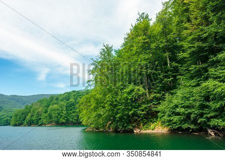 Beautiful Vihorlat Lake Among The Forest In Summer. Fantastic Slovakian Mountain Scenery