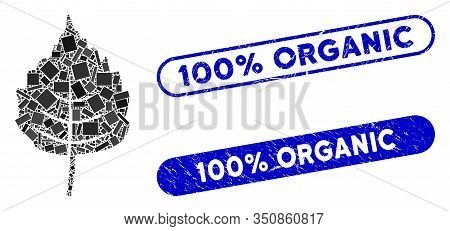 Mosaic Birch Leaf And Corroded Stamp Seals With 100 Percent Organic Phrase. Mosaic Vector Birch Leaf