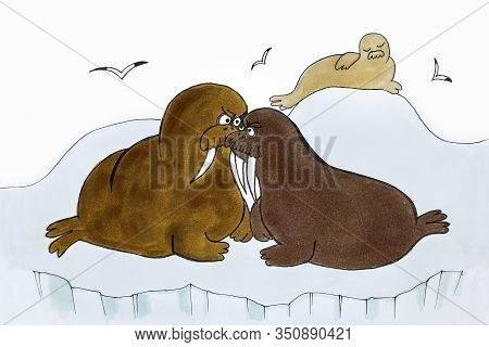 Drawing Of Walruses Making Claims To Each Other Because Of The Rights To A Female In The Far North.a