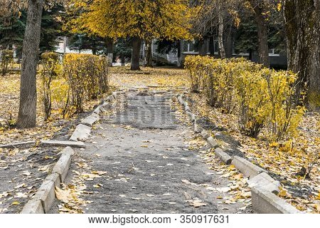 Unkempt, Old Park In City. Broken Park Footpath, Broken Curb And Split Asphalt Pavement. Ruin And Di