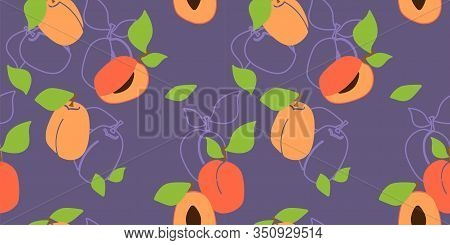 Vector Seamless Pattern With Apricot Pulp, Peaches. Purple Background. Trendy Hand Drawn Textures. M