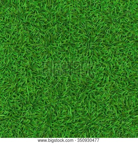 Realistic Seamless Green Lawn. Grass Carpet Texture, Fresh Nature Covering Pattern, Garden Green Gra