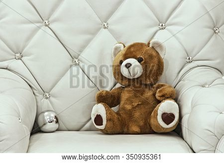 Christmas Teddy Bear On White Leather Chair Taken Closeup.