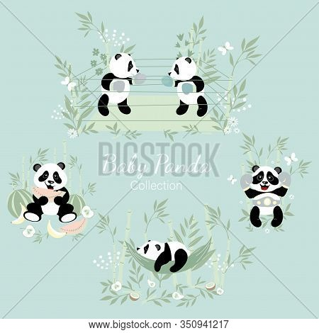 Baby Panda Collection. Little Pandas Are Engaged In Boxing, A Little Panda Sleeps In A Hammock, A Pa