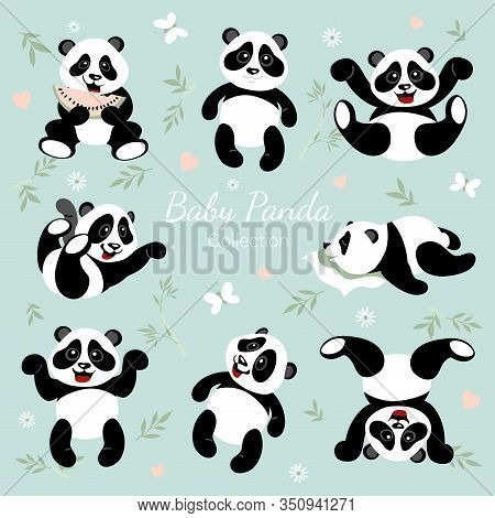 Baby Panda Collection. Little Pandas Have Fun. The Illustrations Are Decorated With Bamboo, Flowers,