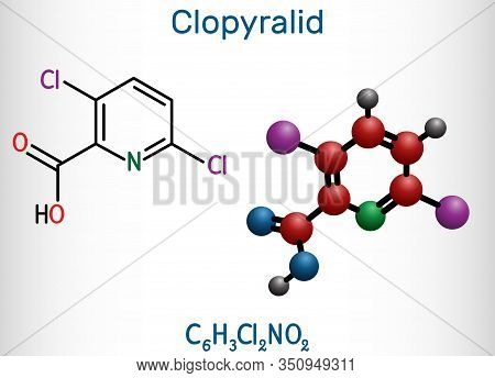 Clopyralid, C6h3cl2no2 Molecule. It Is Herbicide, Organochlorine Pesticide. Structural Chemical Form