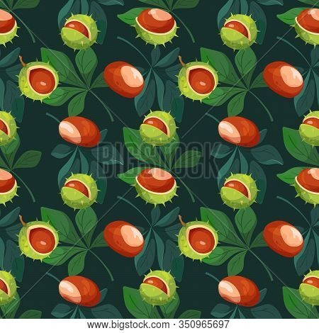 Seamless Pattern With Chestnut, Slices, Leaves And Peels. Modern Hand Drawn Stylized Chestnut Fruits
