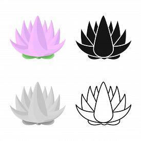 Vector Design Of Flower And Lotus Sign. Set Of Flower And Leaf Stock Symbol For Web.