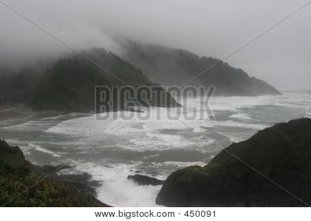 Wild Ocean Shores