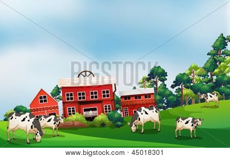 Illustration of the cows in the farm