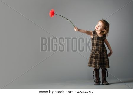 Little Beauty Girl With Red Flower.