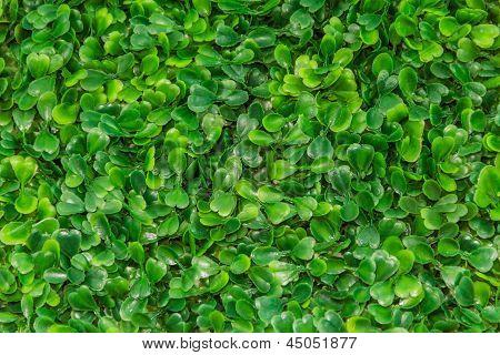 Plastic Green Grass