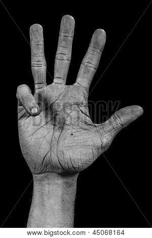 Hand On Black Palm - Four