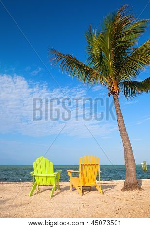 Summer scene with colorful lounge chairs on a tropical beach in Florida with palm tree