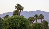 Southern California sunset from Indio in the Coachella Valley poster