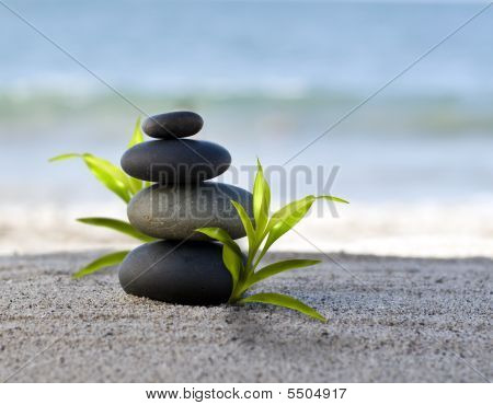 Zen Style Stones With Bamboo Leafs