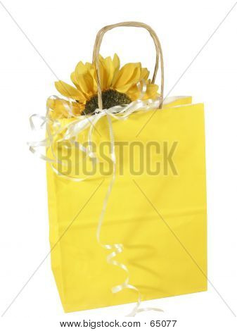 Sunny Gift