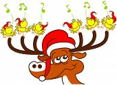 Nice deer with red Santa hat while holding with its antlers a group of six enthusiastic yellow birds which sing and celebrate Christmas in a very happy mood poster