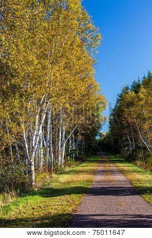 Trans Canada Trail, or known as the Confederation Trail that runs the length of   Prince Edward Island, Canada.