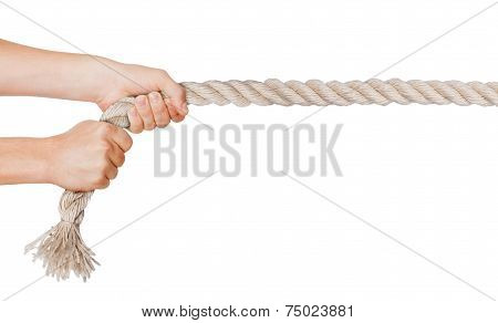 Hands pull a rope. Isolated white background poster