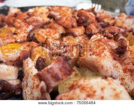 Closeup Galician Octopus With Paprika And Potatoes