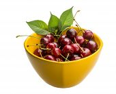 Gean - sweet cherry berries isolated on white poster