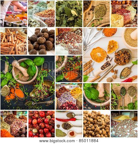 collage photos of various spices and herbs
