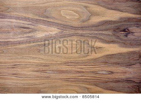 Black Walnut Wood Texture
