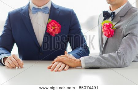 people, homosexuality, same-sex marriage and love concept - close up of happy married male gay couple in suits with buttonholes and bow-ties holding hands on wedding