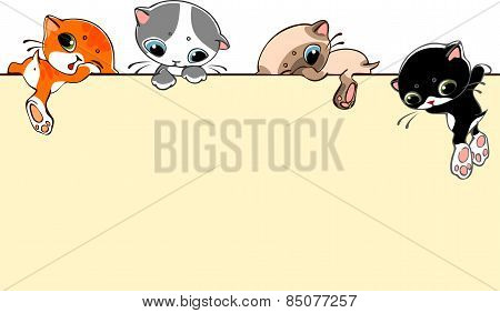 Banner With Cats