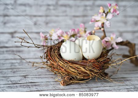 Conceptual Whole and Broken Easter Eggs in a Nest with a Pretty Little Flowers Placed on Top of a White Wooden Table.