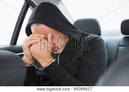 Criminal arrested by police