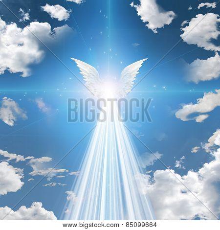 Angel winged