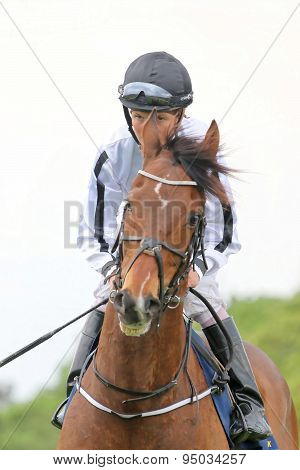 One Jockey On A Race Horse