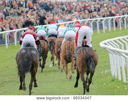 Rear View Of The Ponny Race Horses In A Curve