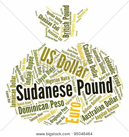 Sudanese Pound Indicates Foreign Currency And Coin