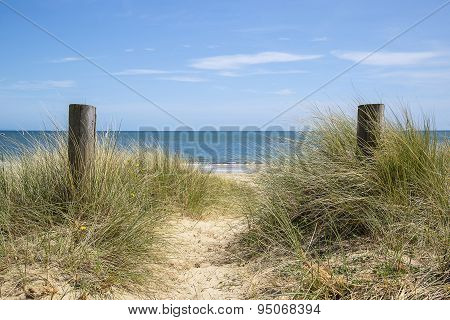 Lovely Sand Dunes And Beach Landscape On Sunny Summer Day