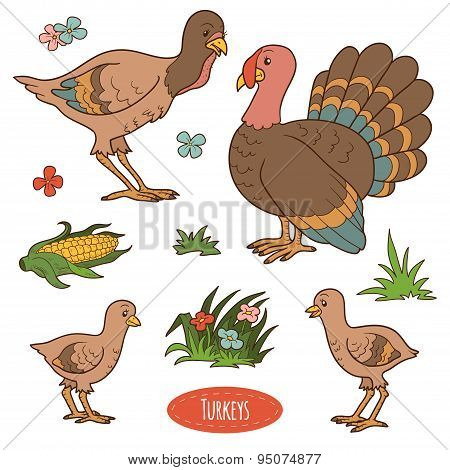 Color Set Of Cute Farm Animals And Objects, Vector Family Turkeys