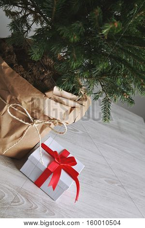 Close up of a present lying next to a Christmas tree in a large pot wrapped in paper on light gray wooden floor