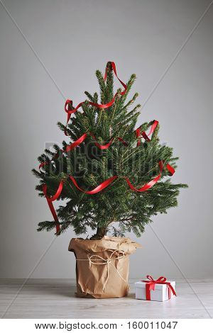 Little potted Christmas tree decorated with a long red ribbon with a present in a white box underneath isolated on white background and wooden floor, ready for custom mocjup decoration
