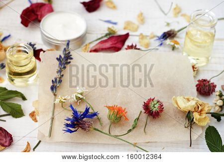 Various dried medicinal herbs on craft paper for recipe or note. Essential oils, cream sample in blur background. Herbal medicine homemade preparation set.