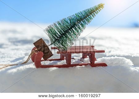 Red sleigh carrying a small Christmas tree in winter