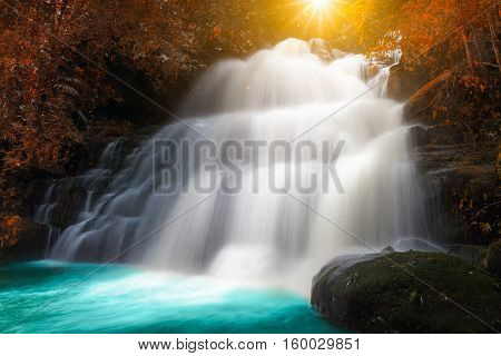 Amazing Beautiful Waterfalls And Dragonflowers In Autumn Forest