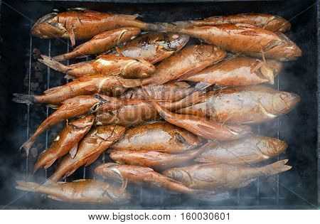 Fresh hot smoked fish on the grill
